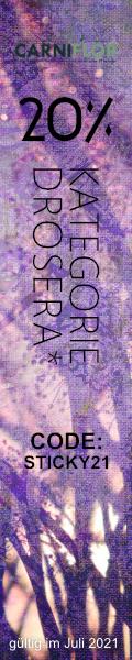 banner-drosera